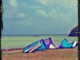 Carnet de voyage : La martinique, une île paradisiaque!